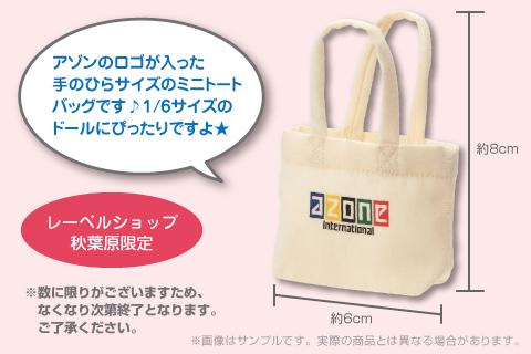 akb_1st_minibag2