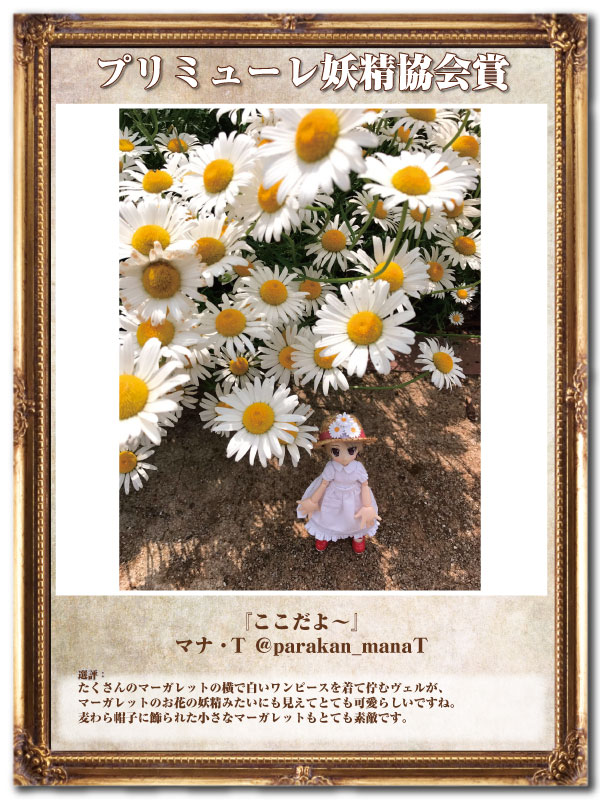 プリミューレ妖精協会賞04